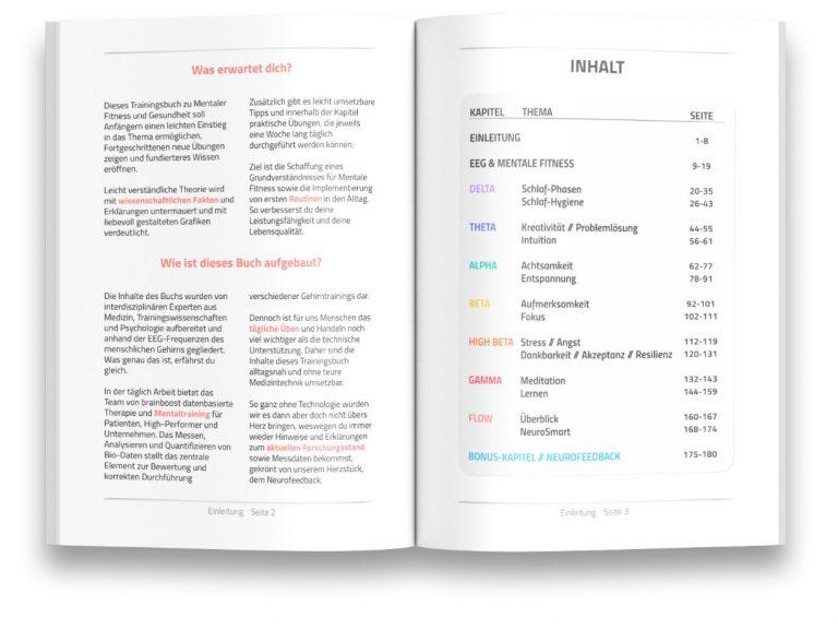 brainboost book